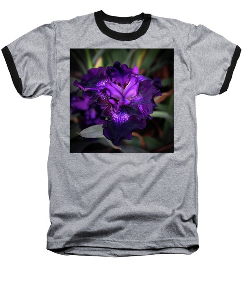 Purple Iris 5994 H_2 Baseball T-Shirt