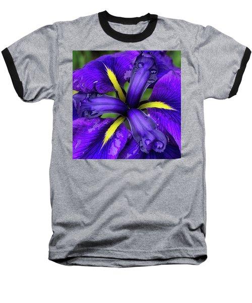 Purple Iris Centre Baseball T-Shirt