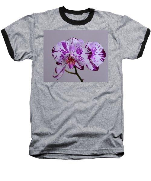 Purple Moth Orchid Baseball T-Shirt by Kathy Eickenberg