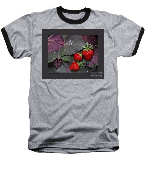 Purple Orach With Strawberries Baseball T-Shirt by Patricia Overmoyer