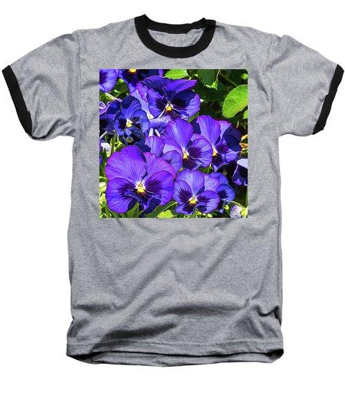 Purple Pansies In Morning Light Baseball T-Shirt