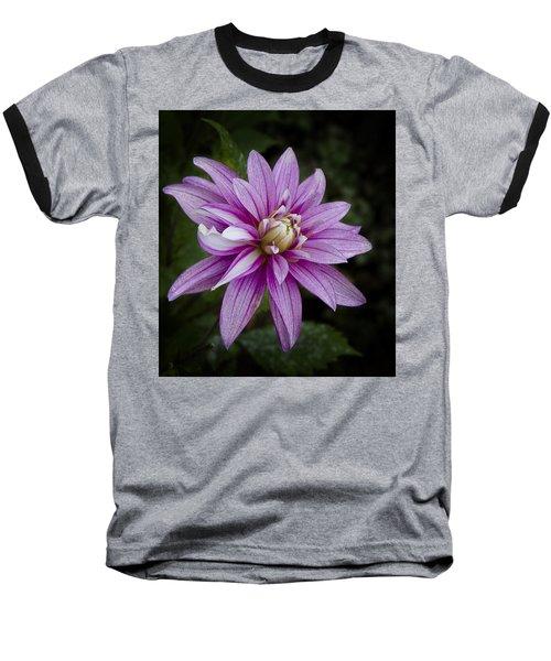 Purple Pink Dahlia Baseball T-Shirt