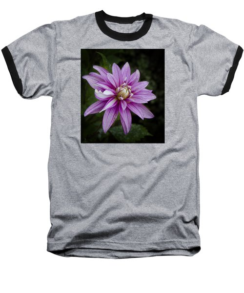 Purple Pink Dahlia Baseball T-Shirt