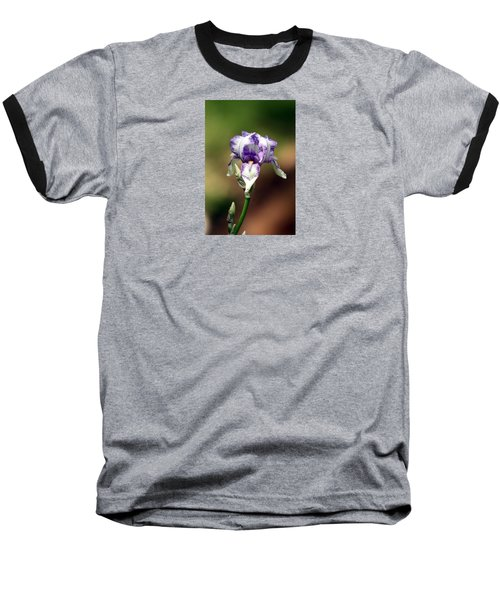 Baseball T-Shirt featuring the photograph Purple Striped Bearded Iris by Sheila Brown