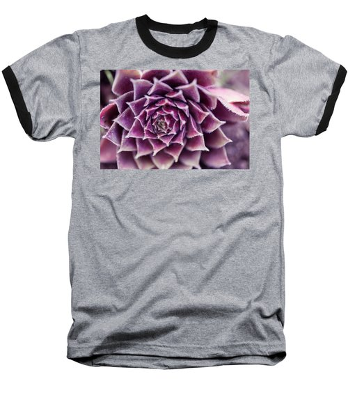 Baseball T-Shirt featuring the photograph Purple Succulent Plant Blossom In Summer by Jingjits Photography