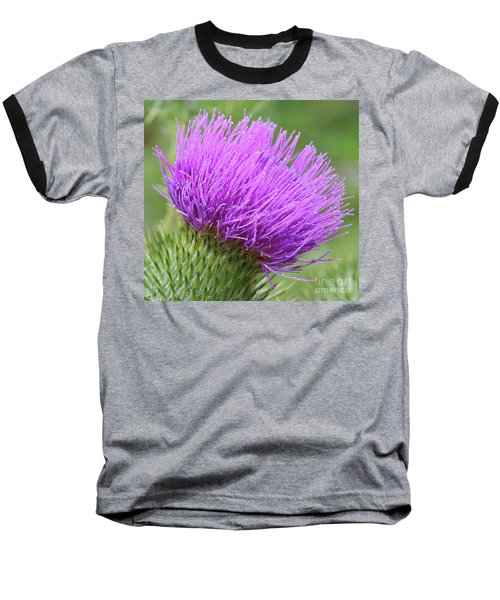Purple Thistle Baseball T-Shirt