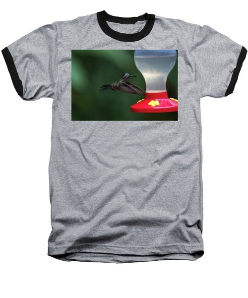 Purple-throated Mountain Gem Baseball T-Shirt by James David Phenicie