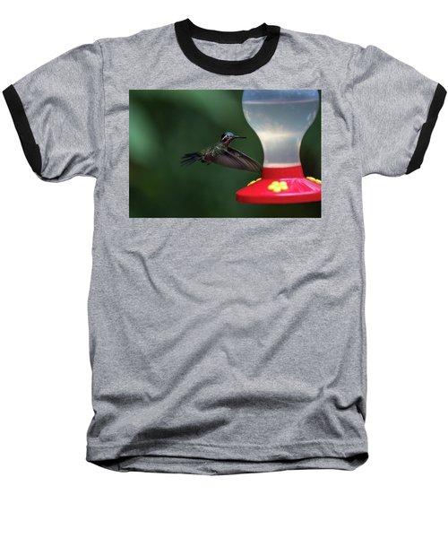 Purple-throated Mountain Gem Baseball T-Shirt