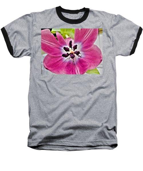 Baseball T-Shirt featuring the photograph Purple Tulip by Nina Ficur Feenan