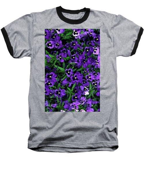 Purple Viola Flowers Baseball T-Shirt by Sally Weigand