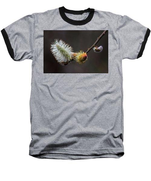 Pussy Willow Stony Brook New York Baseball T-Shirt