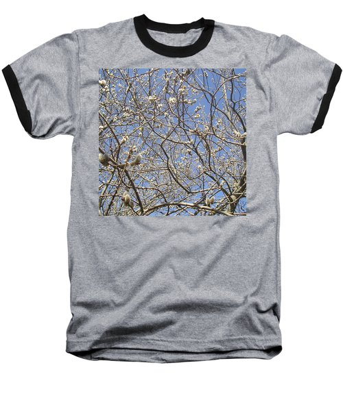 Pussywillows Bursting To Life Baseball T-Shirt by Roger Swezey