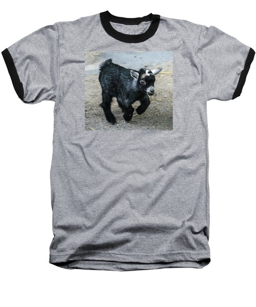 Pygmy Goat Kid Baseball T-Shirt