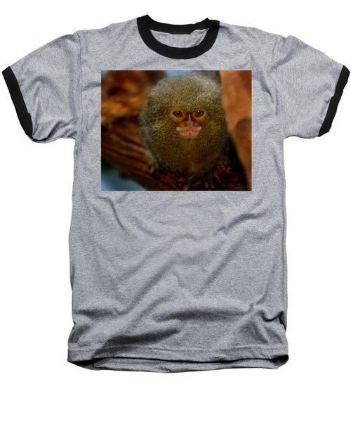 Pygmy Marmoset Baseball T-Shirt by Anthony Jones