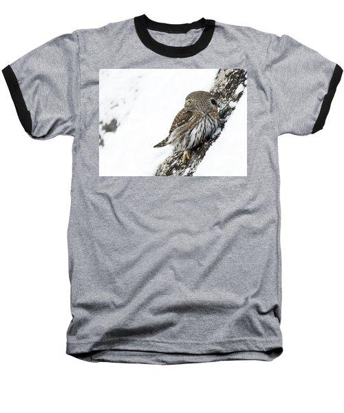 Pygmy Owl Baseball T-Shirt