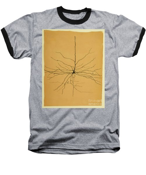 Pyramidal Cell In Cerebral Cortex, Cajal Baseball T-Shirt