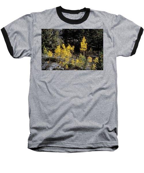 Aspens In Fall At Eleven Mile Canyon, Colorado Baseball T-Shirt by John Brink