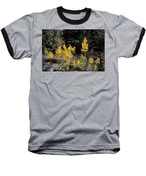 Aspens In Fall At Eleven Mile Canyon, Colorado Baseball T-Shirt