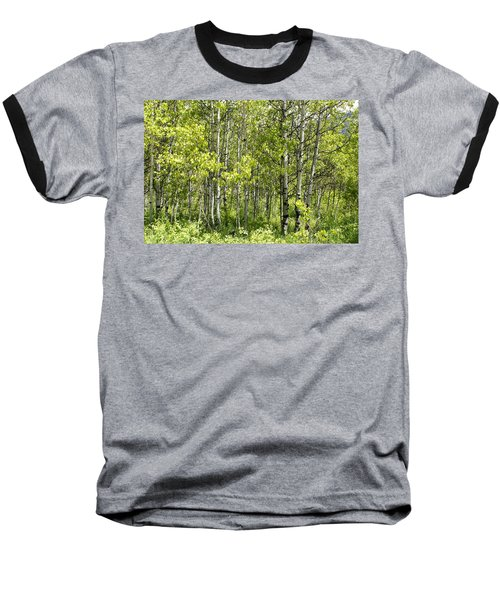 Quaking Aspens 2 Baseball T-Shirt