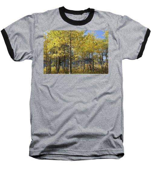 Quaking Aspens Baseball T-Shirt by Cynthia Powell