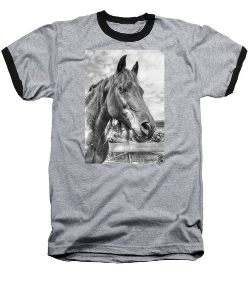 Quarter Horse Portrait Baseball T-Shirt by Jim Sauchyn
