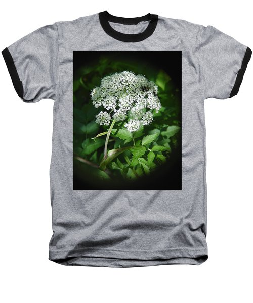 Queen Ann Lace Baseball T-Shirt