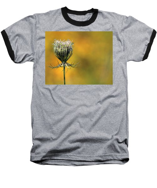Queen Anne's Lace Stony Brook New York Baseball T-Shirt by Bob Savage