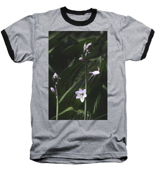 Quiet Life Baseball T-Shirt