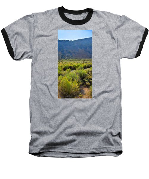 Rabbit Brush In Bloom Baseball T-Shirt