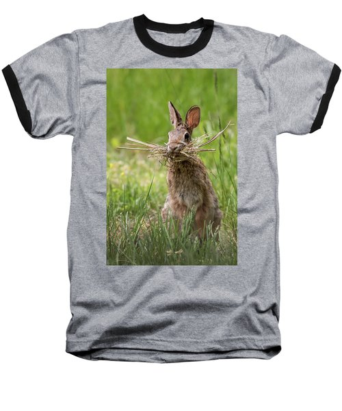 Rabbit Collector  Baseball T-Shirt by Terry DeLuco