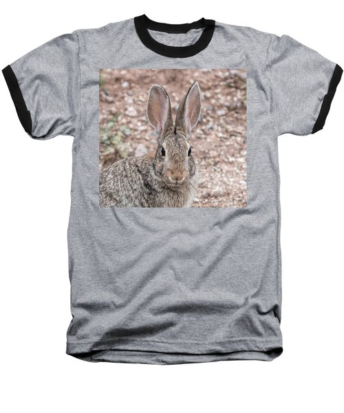Rabbit Stare Baseball T-Shirt