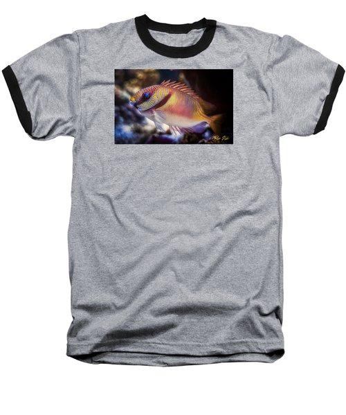 Rabbitfish Baseball T-Shirt