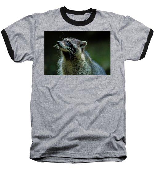 Raccoon 1 Baseball T-Shirt