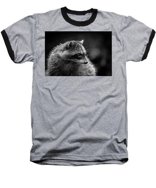 Raccoon 3 Baseball T-Shirt