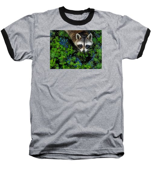 Raccoon Looking Up Baseball T-Shirt