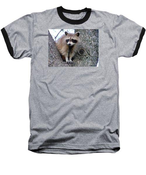 Raccoon Lookout Baseball T-Shirt