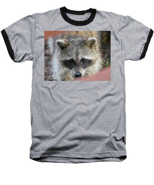 Raccoon's Gorgeous Face Baseball T-Shirt