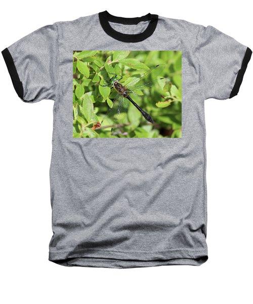 Racket-tailed Emerald  Baseball T-Shirt