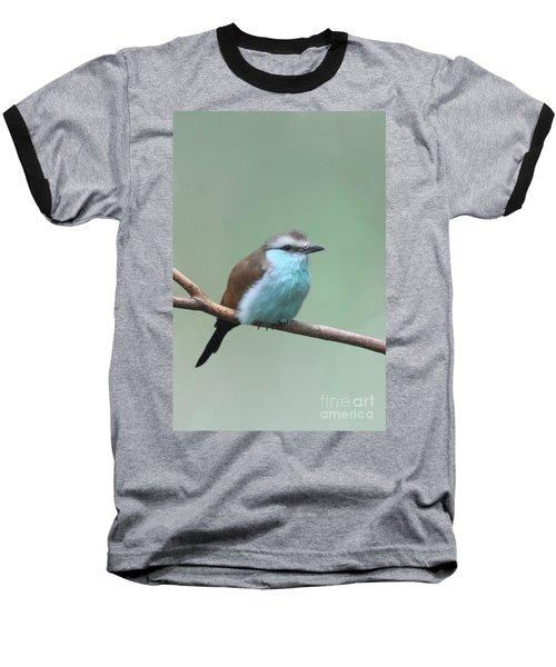 Racket-tailed Roller V2 Baseball T-Shirt