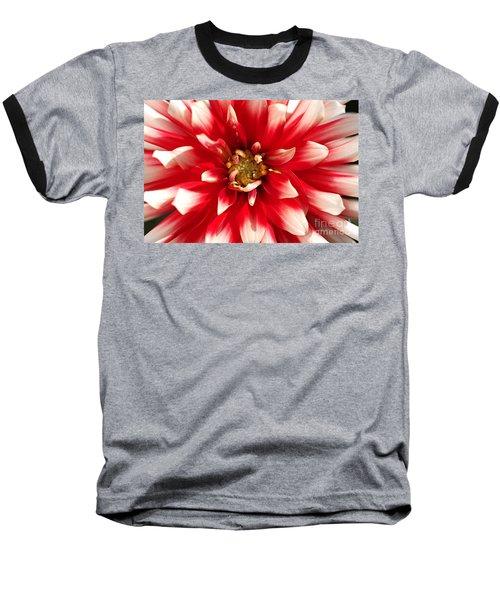 Radiant Dahlia Baseball T-Shirt
