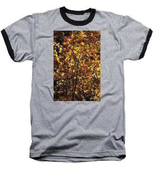 Radiant Leaves Baseball T-Shirt by Karen Harrison