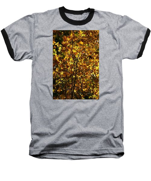 Radiant Leaves Baseball T-Shirt