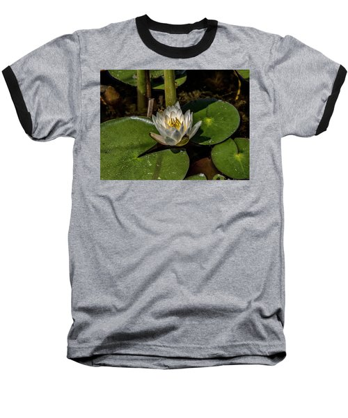 Radiant White Pond Lily  Baseball T-Shirt
