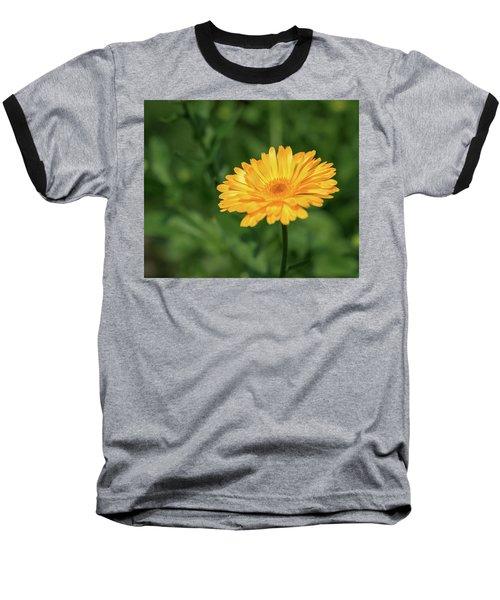 Radiant Summer Flower Soaking It Up Baseball T-Shirt