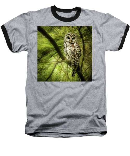 Radiating Barred Owl Baseball T-Shirt