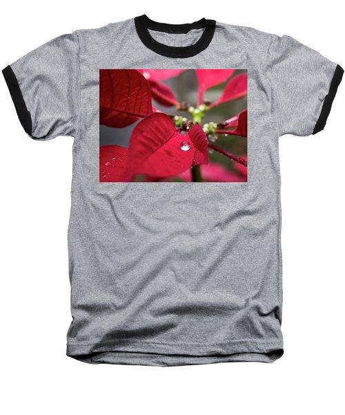 Rain Drop On A Poinsettia  Baseball T-Shirt