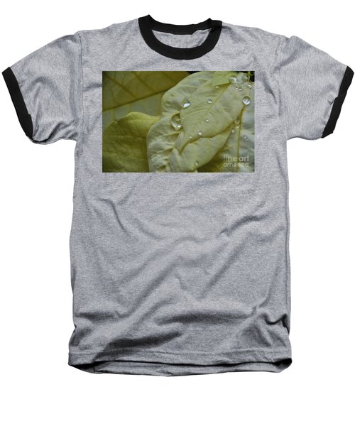 Rain Drops On A  White Poinsettia Baseball T-Shirt