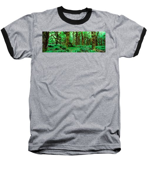 Rain Forest, Olympic National Park Baseball T-Shirt by Panoramic Images