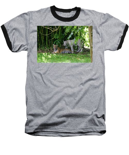 Rain Forest Tigers Baseball T-Shirt