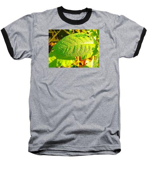 Rain On Leaf Baseball T-Shirt by Craig Walters